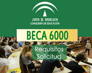 beca-6000-solicitud