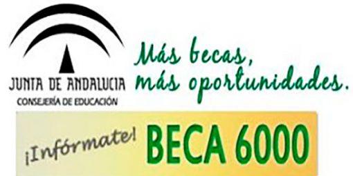 beca-6000